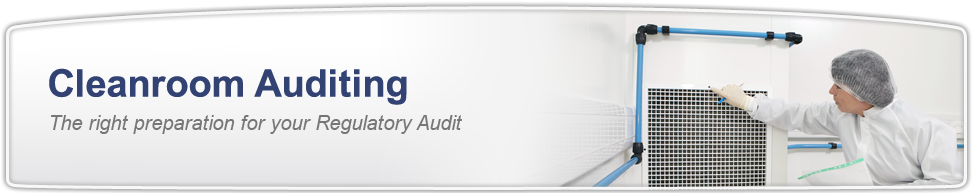 Cleanroom Auditing